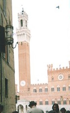 View over the Campo to the Palazzo Pubblico