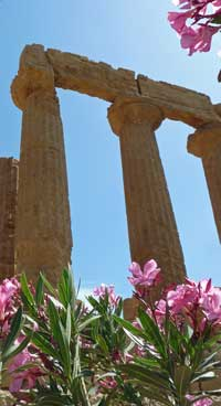 Temple, Agrigento
